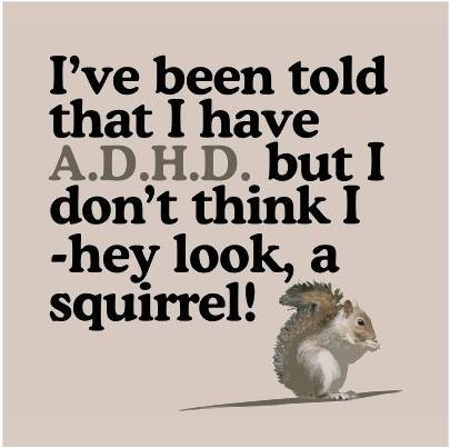 ADHD_SQUIRREL_6